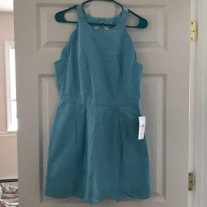 lauren james landry solid dress in powder blue